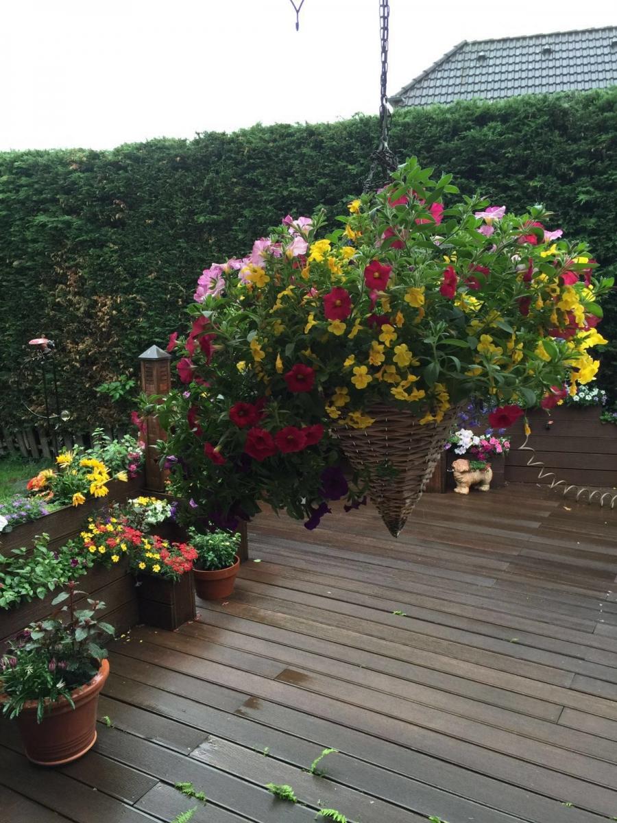 Garten Erens 1
